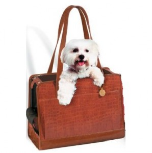 bolso-perros3