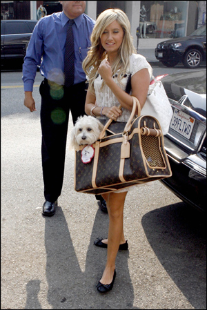 mascotas lindsay con perro